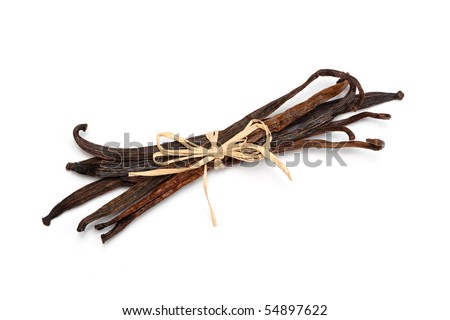 Bundle of fresh vanilla beans bond together with raf? ia, isolated on white. - stock photo