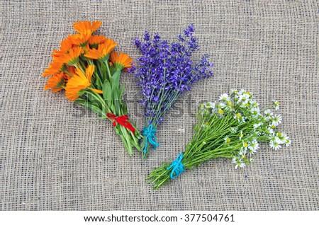 Bundles of fresh chamomile, calendula and lavender on linen background - stock photo