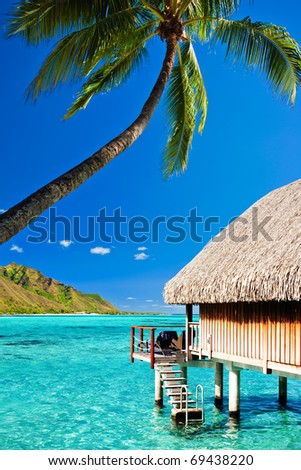 Bungallow and palm with steps to amazing blue lagoon - stock photo