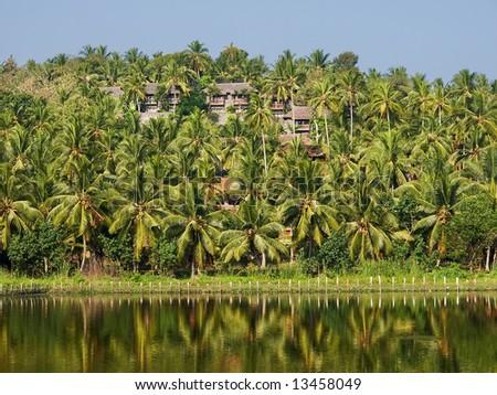 Bungalows hidden under the coconut trees, Kerala, India - stock photo