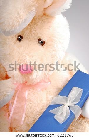 Bunny Holding gift Box - stock photo