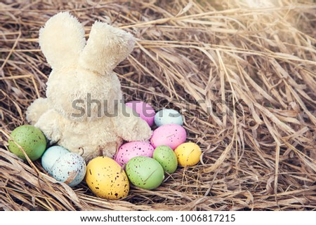 Bunny toy with colorful easter eggs on grass outside