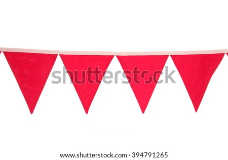 Bunting white background studio cutout