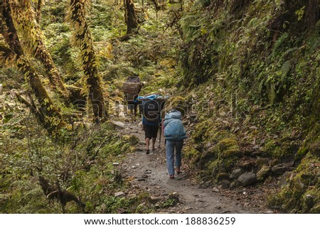 BUPSA, NEPAL - CIRCA OCTOBER 2013: porters on Himalayan paths is an integral part of their circa October 2013 in Bupsa. - stock photo