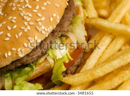 burger and french fries close-up - stock photo