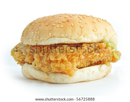 burger isolated on a white background - stock photo