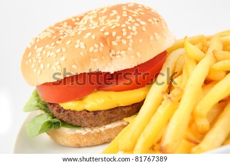 Burger with Fries - stock photo