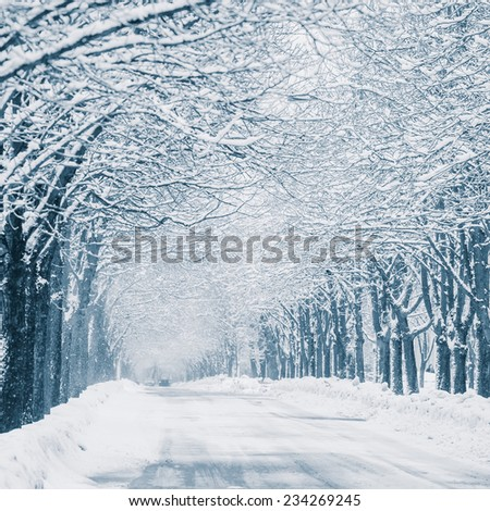 buried in snow blizzard city streets and car - stock photo