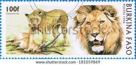 BURKINA FASO - CIRCA 1996: A stamp printed in Burkina Faso shows a Lion (Panthera leo), circa 1996 - stock photo