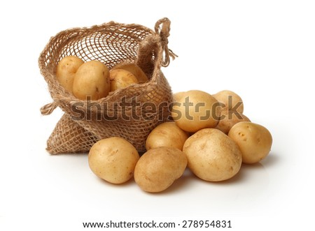 Burlap sack of freshly dug new potatoes on white background