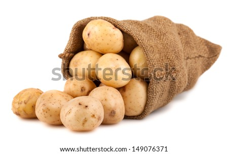 Burlap sack with potato isolated on white background - stock photo