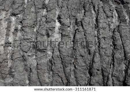 Burned down wood (wooden) background  - stock photo
