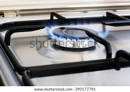 Burner of stainless steel gas cooker, selective focus