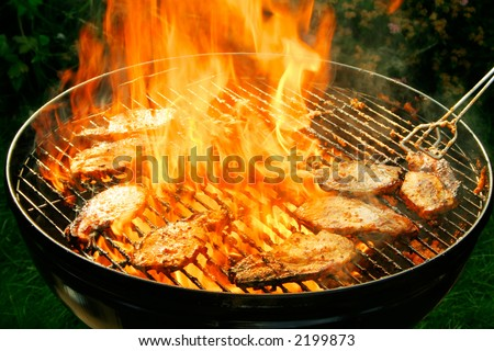 Burning barbecue - stock photo