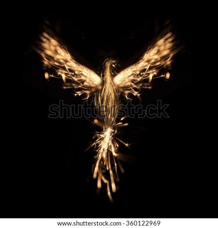 Burning bird phoenix isolated on black background - stock photo