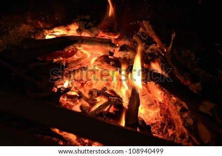 Burning branches on the Fire
