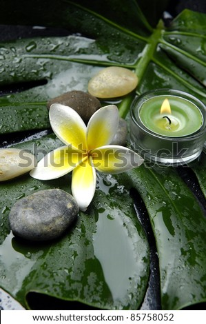 burning candle and frangipani with stones on monstera leaf - stock photo
