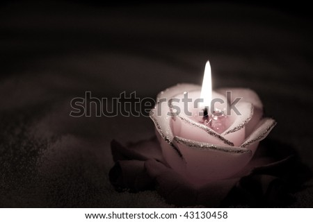 Burning candle in the form of roses in darkness.