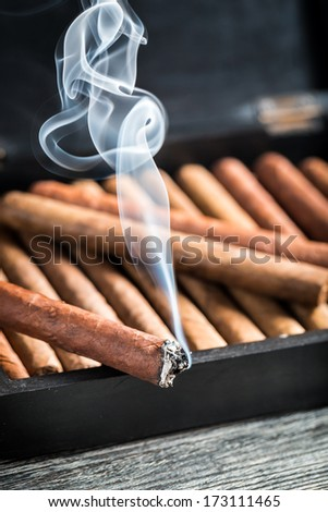 Burning cigar on wooden humidor full with cigars - stock photo