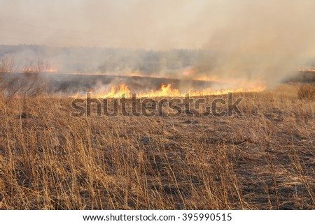 Burning dry grass at the spring field - stock photo