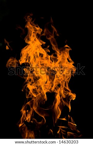 Burning fire close-up - stock photo