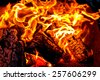 Burning fire flame - stock photo