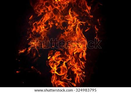 Burning fire flame background - stock photo