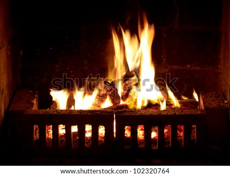 Burning fire in the fireplace