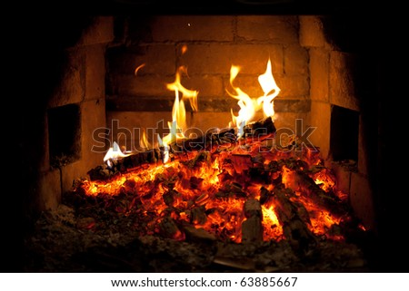 burning fire in the fireplace - stock photo