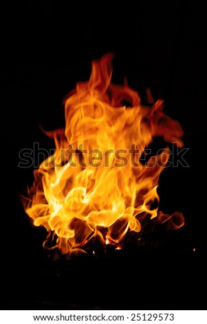 Burning fire isolated on a black background - stock photo