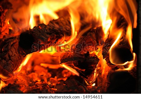 Burning fire wood - stock photo