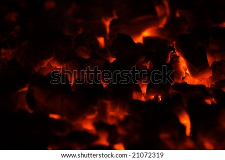 Burning fire wood