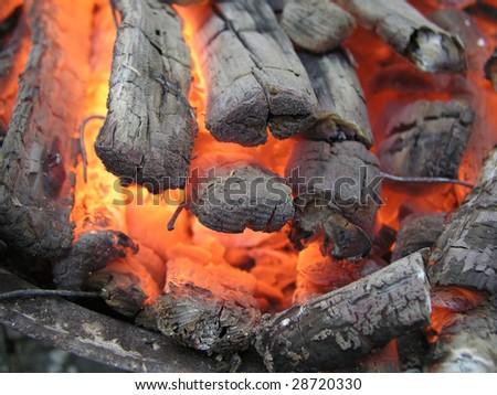 burning firewood - stock photo