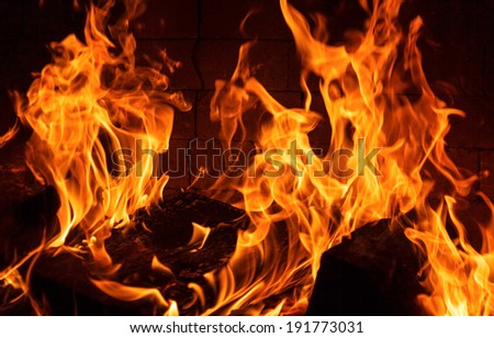 Burning firewood. Fire in Fireplace - stock photo