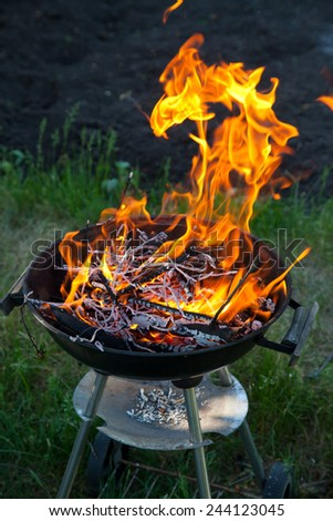 burning firewood in barbecue outdoors