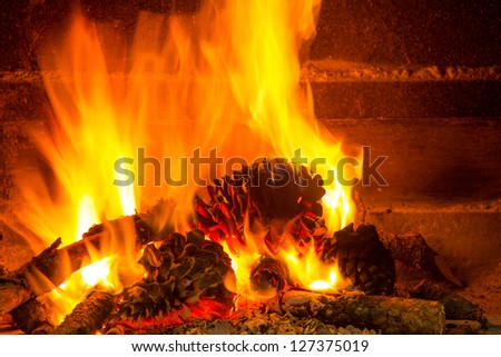 burning firewood in chimney with pine cones and fire - stock photo