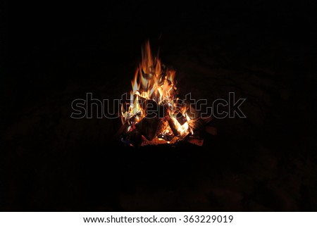 Burning firewood in the night fire - stock photo