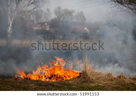 Burning grass on field near with tree in background