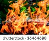 Burning hot barbeque in the backyard. Fire flame - stock photo