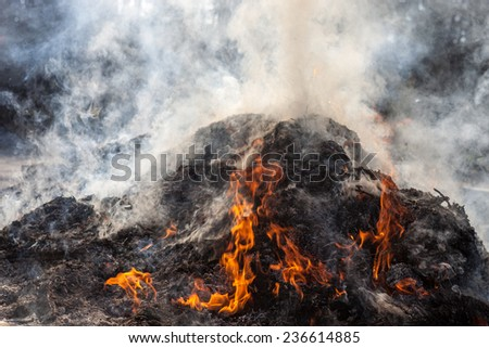 Burning last year's leaves and grass on the fire. - stock photo