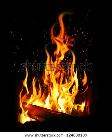 burning log and fire - stock photo