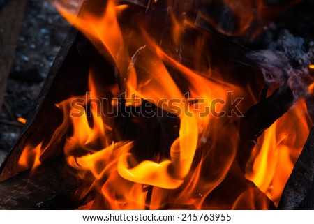 burning log and fire