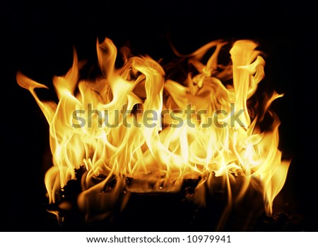 Burning log in a fireplace