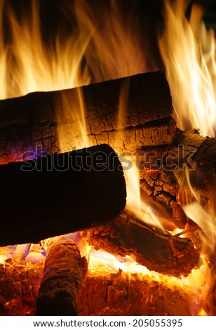 Burning logs closeup