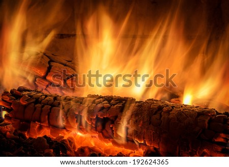 burning logs in the oven - stock photo