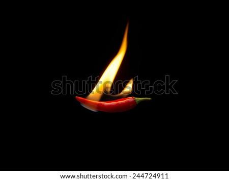 Burning red hot chili peper - stock photo