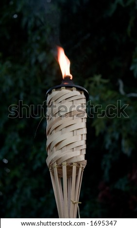 Burning Tiki Torch with blurred maple tree background - stock photo