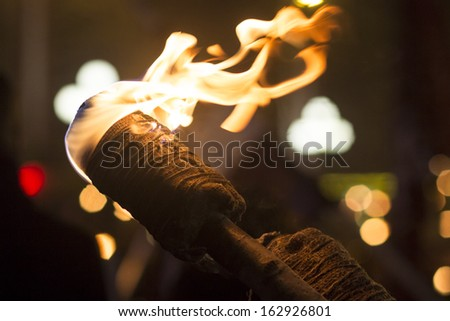 Burning Torch in the Night - stock photo
