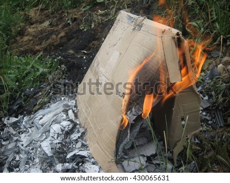 burning trash , on a green lawn , paper , fire dance , spurts of flame , forks of   flame , burning cardboard