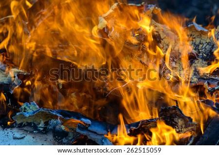 Burning wood, flame and smoke on blue background - stock photo